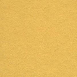 Background CI 2,75x11m 18 Maize