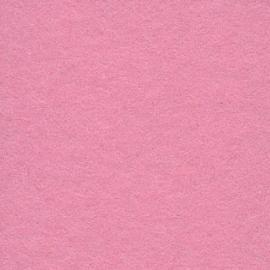 Background CI 2,75x11m 17 Carnation