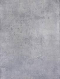 Schmidli BG 1083 Light Neutral Grey. 12x20 / Schmidli Backdrop