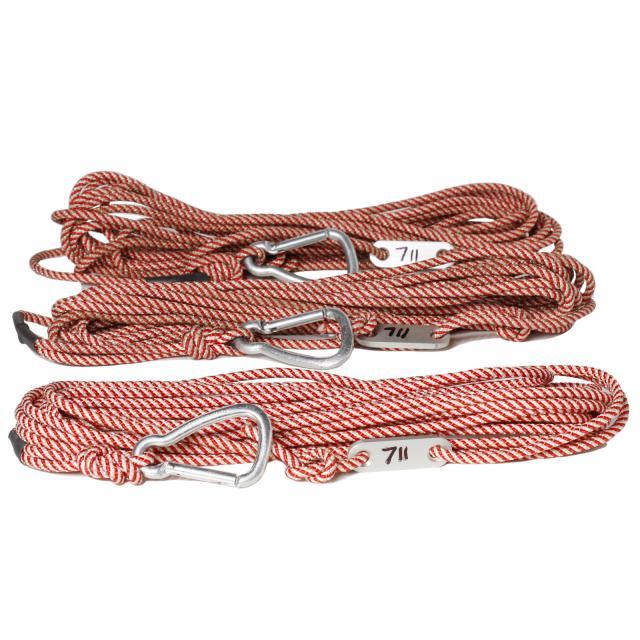 Hosting Ropes Set 3x10m