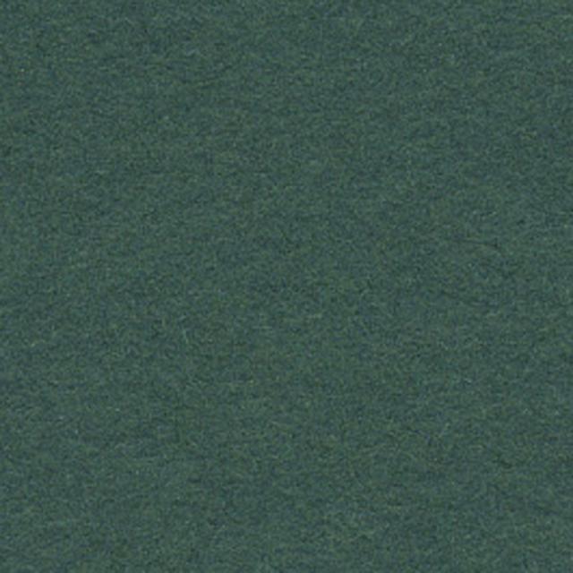 Background CI 2,75x11m 12 Spruce Green