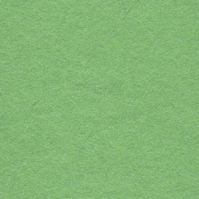 Background CI 2,75x11m 63 Summer Green