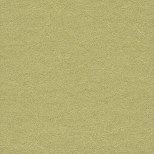 Background CI 2,72x11m 13 Tropical Green