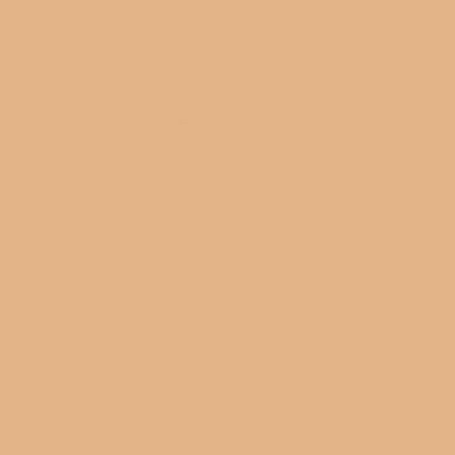 Fondo Savage 2,75x11m 79 Almond