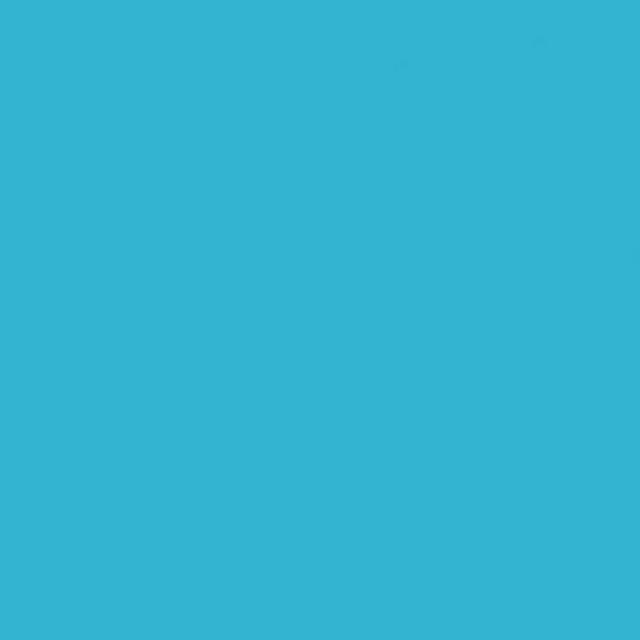 Background Savage 2,75x11m 75 True Blue