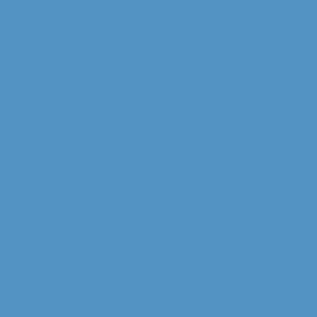 Background Savage 2,75x11m 65 Regal Blue