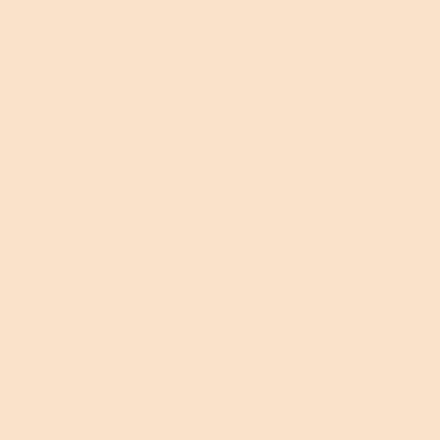 Background Savage 2,75x11m 63 Ivory