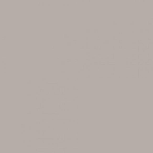 Fondo Savage 2,75x11m 61 TV Gray