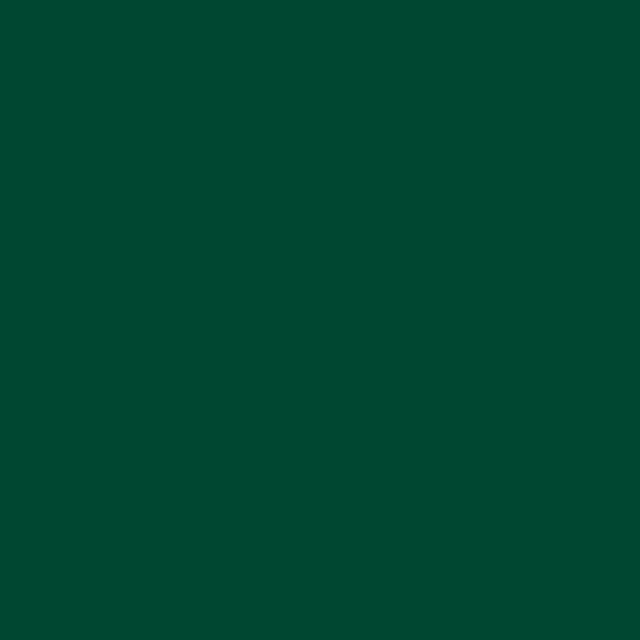 Background Savage 2,75x11m 18 Evergreen
