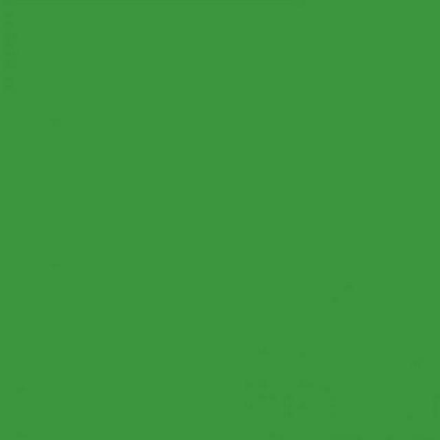Background Savage 2,75x11m 46 Tech Green