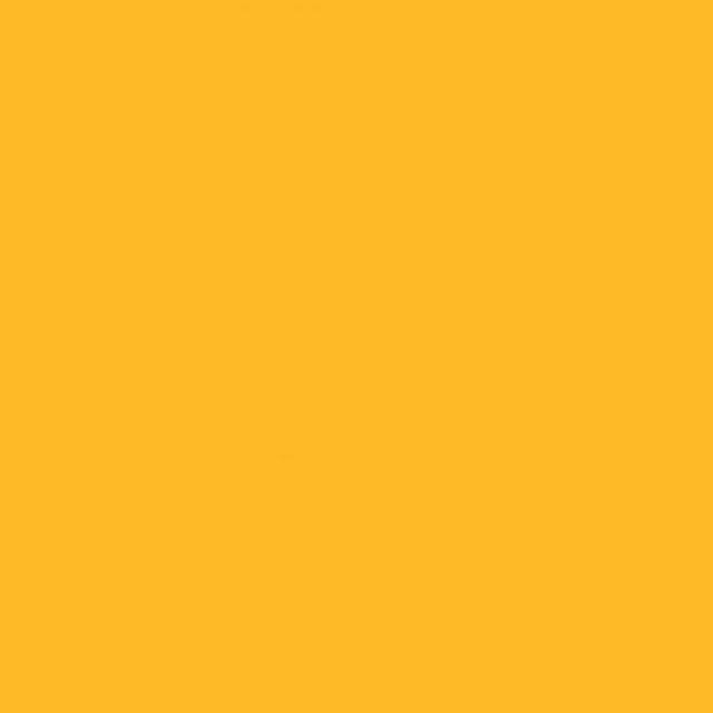 Background Savage 2,75x11m 71 Deep Yellow