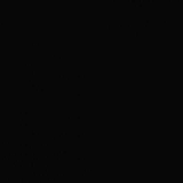 Background Savage 2,75x11m 20 Black