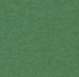 Background CI 2,75x11m 31 Apple Green