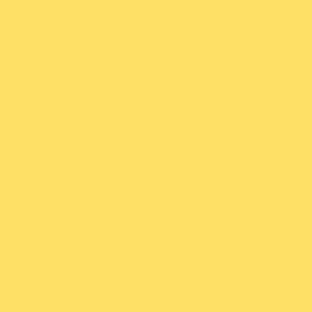 Background Colorama 2,72x11m 16 Dandelion