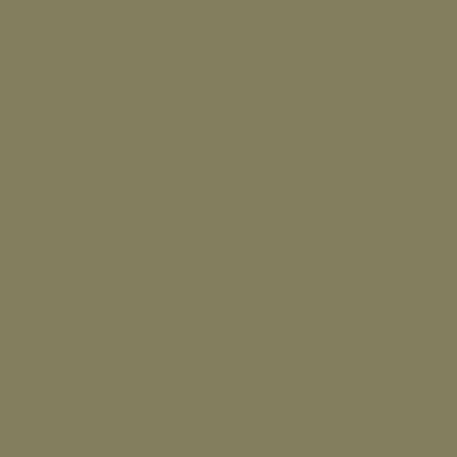 Background Colorama 2,72x11m 97 Leaf