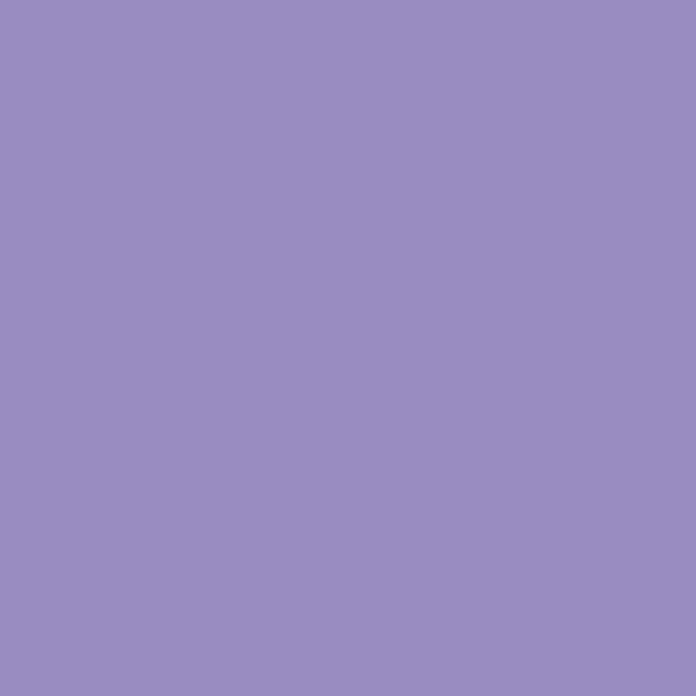 Background Colorama 2,72x11m 10 Lilac