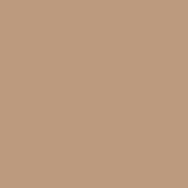 Background Colorama 2,72x11m 11 Coffee