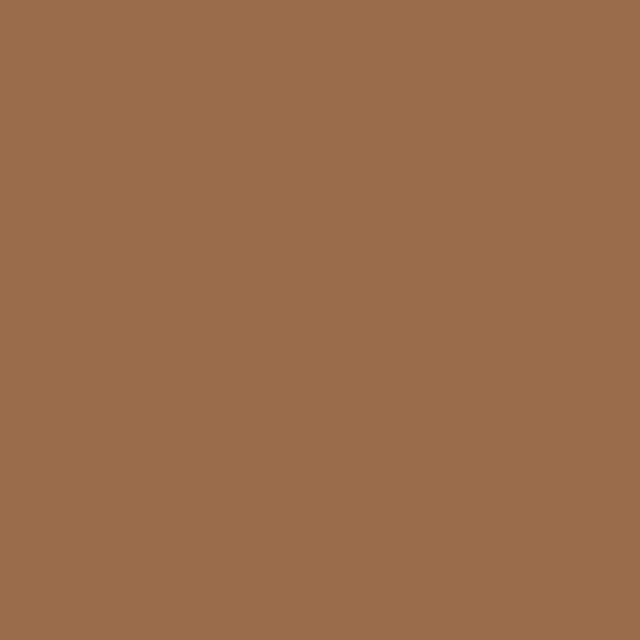 Background Colorama 2,72x11m 17 Cardamon